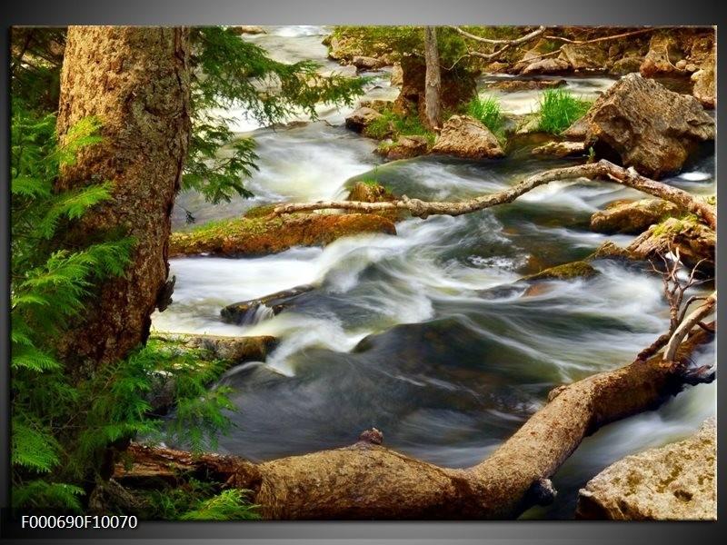 Glas schilderij natuur grijs bruin groen for Schilderij natuur