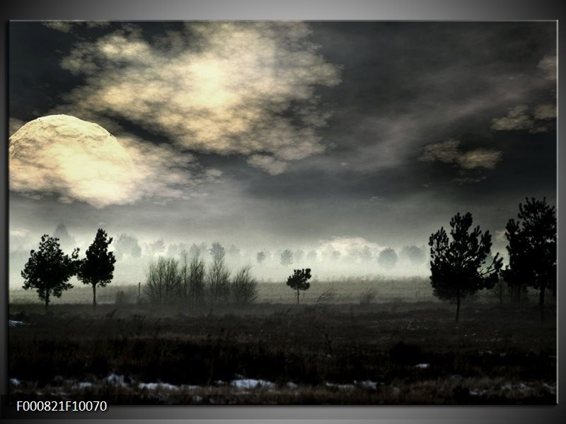 Glas schilderij Maan | Zwart, Geel, Grijs