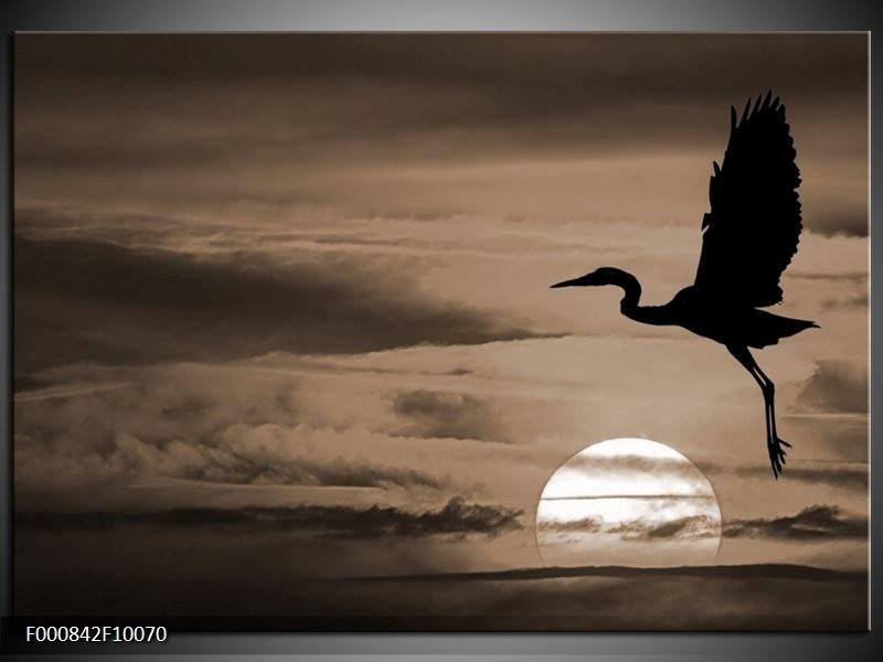Glas schilderij Vogels | Zwart, Wit, Sepia