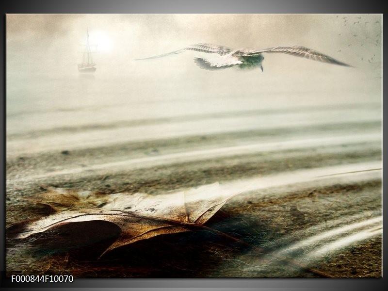 Glas schilderij Vogels   Wit, Grijs,