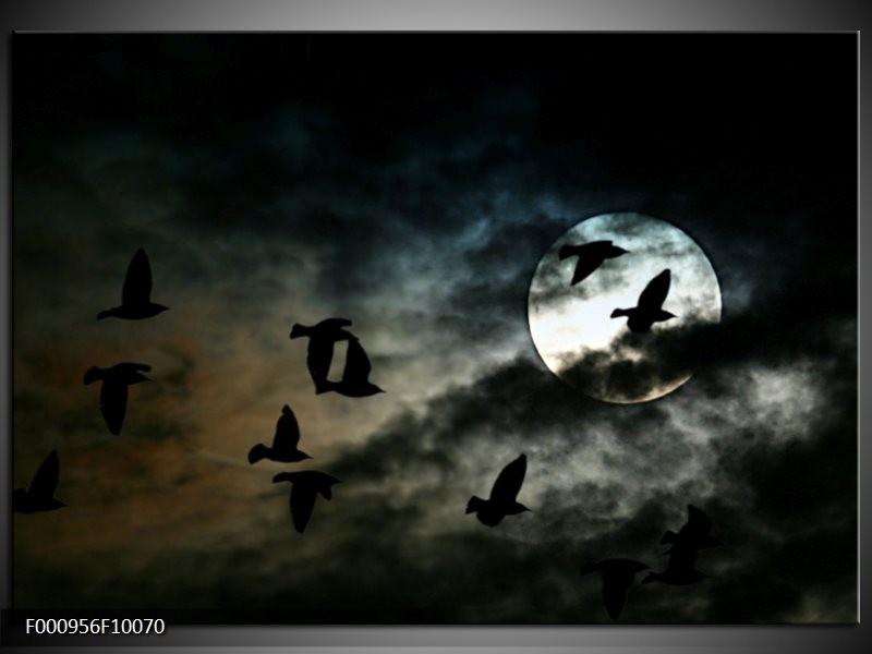 Glas schilderij Vogels | Zwart, Grijs, Wit