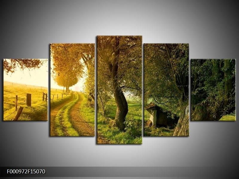OP VOORRAAD Foto canvas schilderij Bomen   150x70cm   F000972