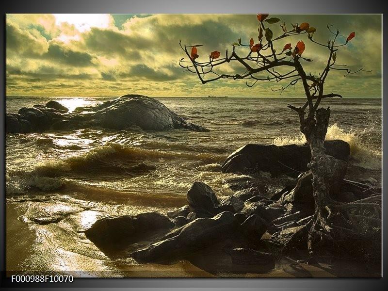 Foto canvas schilderij natuur groen grijs for Schilderij natuur