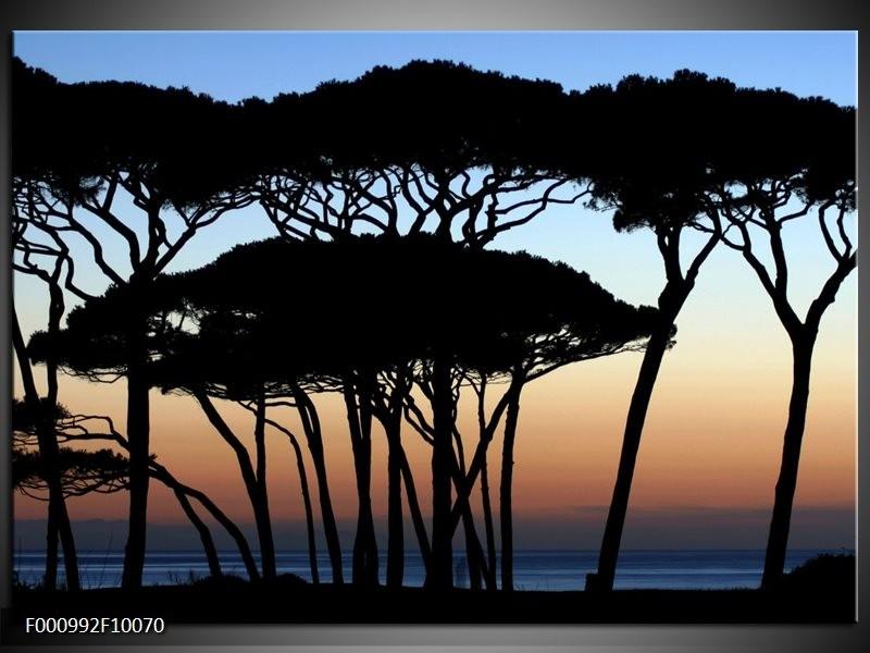 Glas schilderij Bomen   Zwart, Blauw