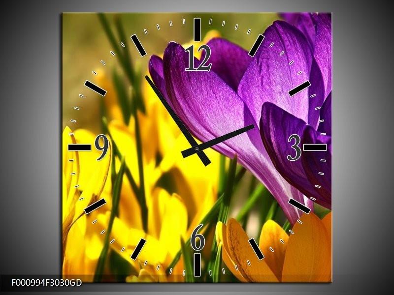 Wandklok op Glas Krokus | Kleur: Geel, Paars, Groen | F000994CGD