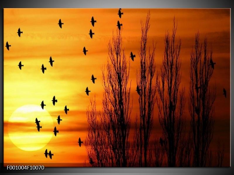 Glas schilderij Vogels   Geel, Zwart