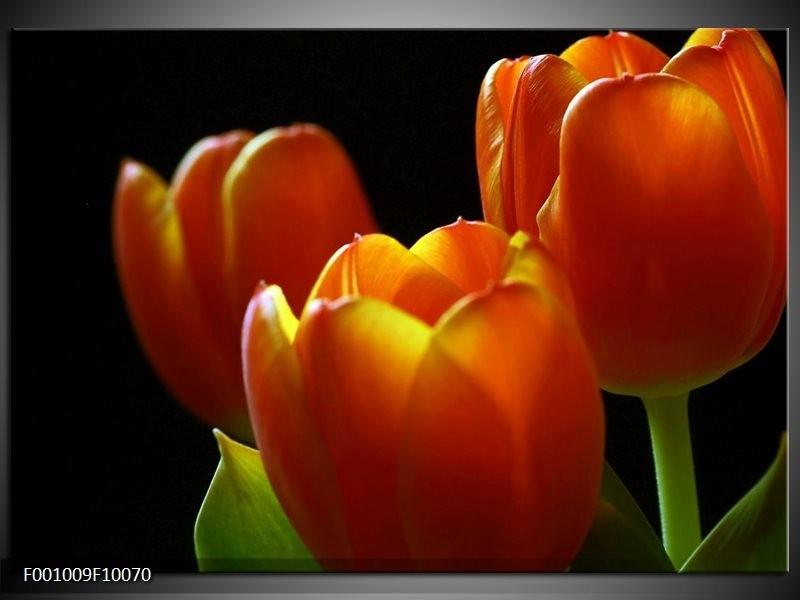 Glas schilderij Tulpen | Rood, Geel, Oranje