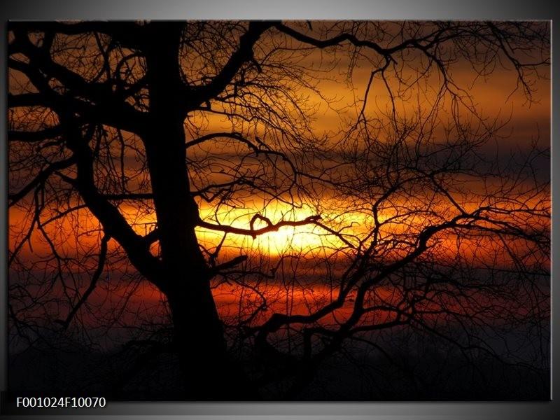 Glas schilderij Boom | Rood, Oranje, Zwart