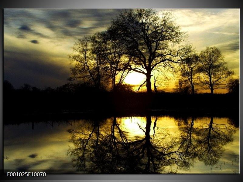 Glas schilderij Natuur | Groen, Geel, Grijs
