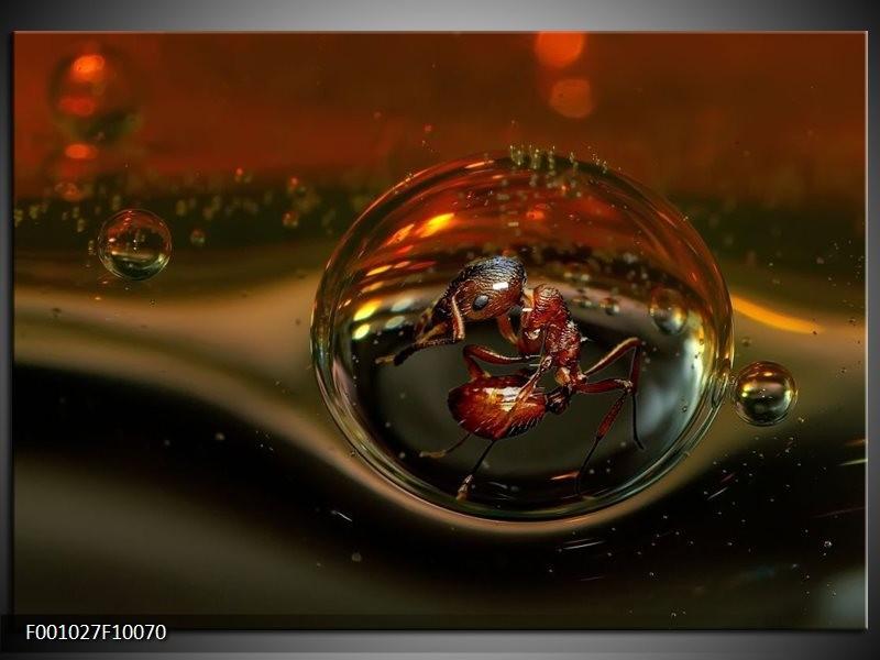 Glas schilderij Druppels | Bruin, Zilver, Wit
