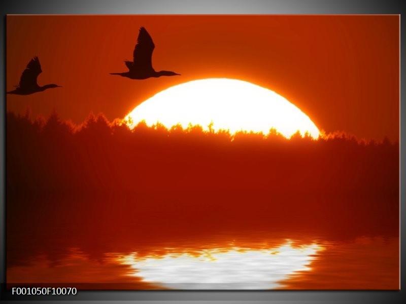 Glas schilderij Zonsondergang | Zwart, Rood, Wit