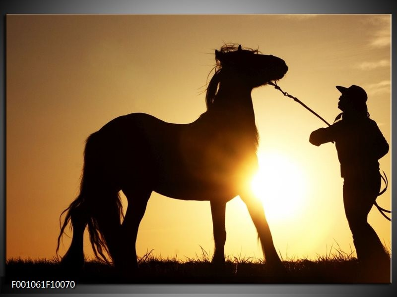 Glas schilderij Paard | Zwart, Geel