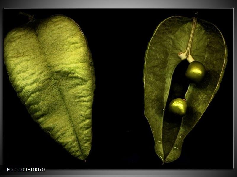 Glas schilderij Blad | Groen, Zwart