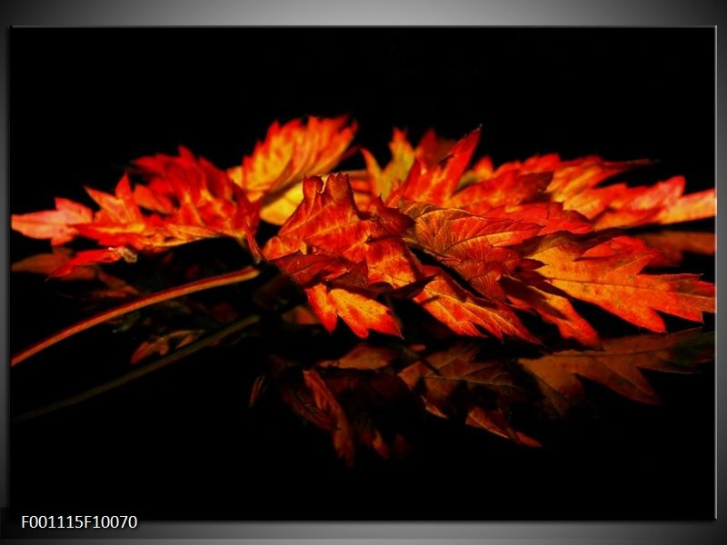 Glas schilderij Herfstblad | Rood, Zwart, Oranje