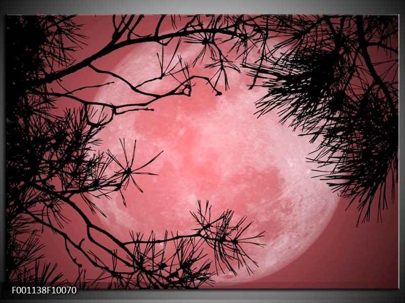 Glas schilderij Maan   Zwart, Paars, Rood