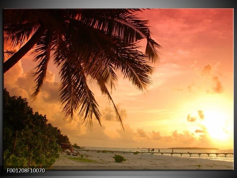 Glas schilderij Palm | Geel, Paars, Wit