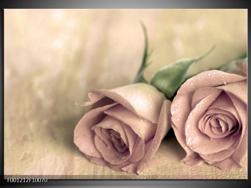 Glas schilderij Roos | Groen, Crème