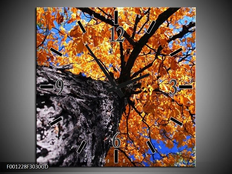 Wandklok op Glas Boom | Kleur: Oranje, Grijs | F001228CGD