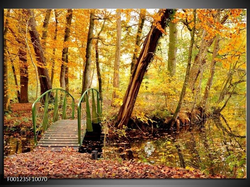Glas schilderij Natuur   Geel, Bruin, Groen