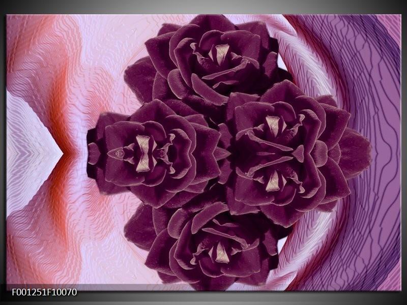 Glas schilderij Bloem   Paars, Wit