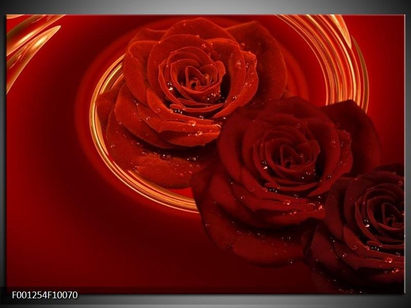 Glas schilderij Roos   Rood, Oranje