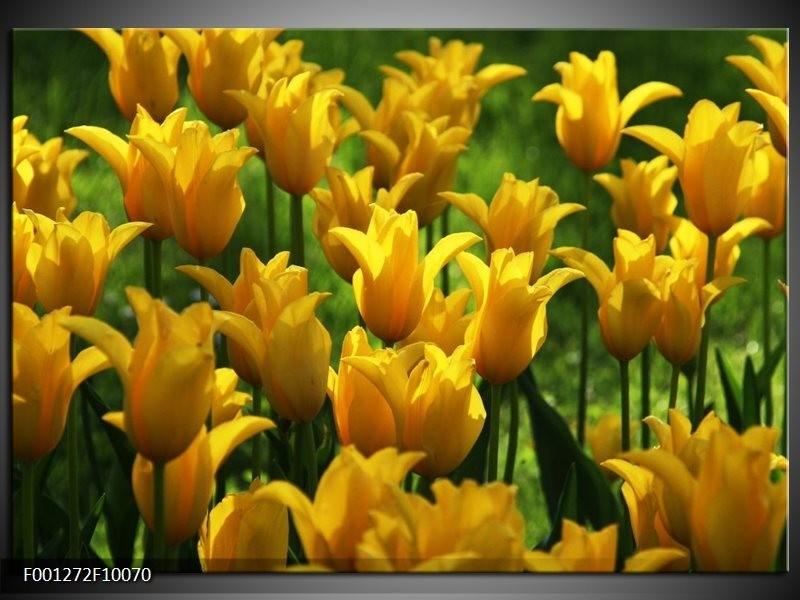 Glas schilderij Tulpen   Geel, Groen