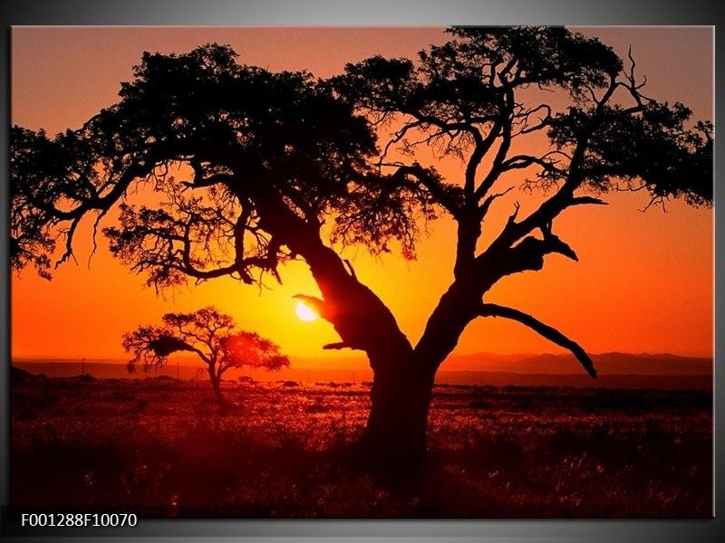 Glas schilderij Zonsondergang   Zwart, Geel, Rood