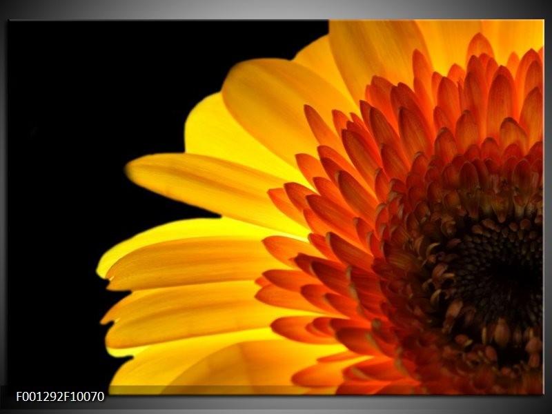 Glas schilderij Bloem | Geel, Rood, Zwart