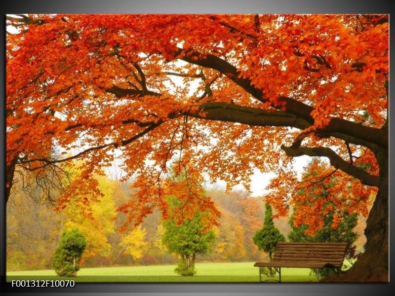 Glas schilderij Herfst | Oranje, Groen, Geel