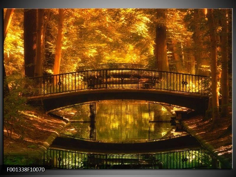 Glas schilderij Natuur | Bruin, Geel, Goud