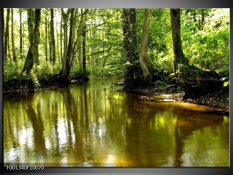 Foto canvas schilderij natuur groen bruin for Schilderij natuur