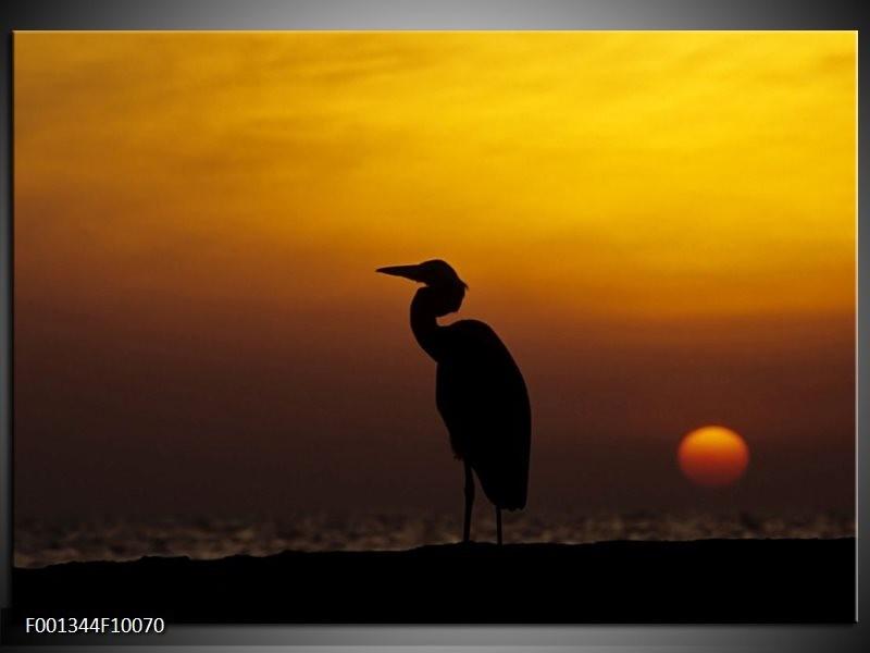 Glas schilderij Vogels | Zwart, Geel