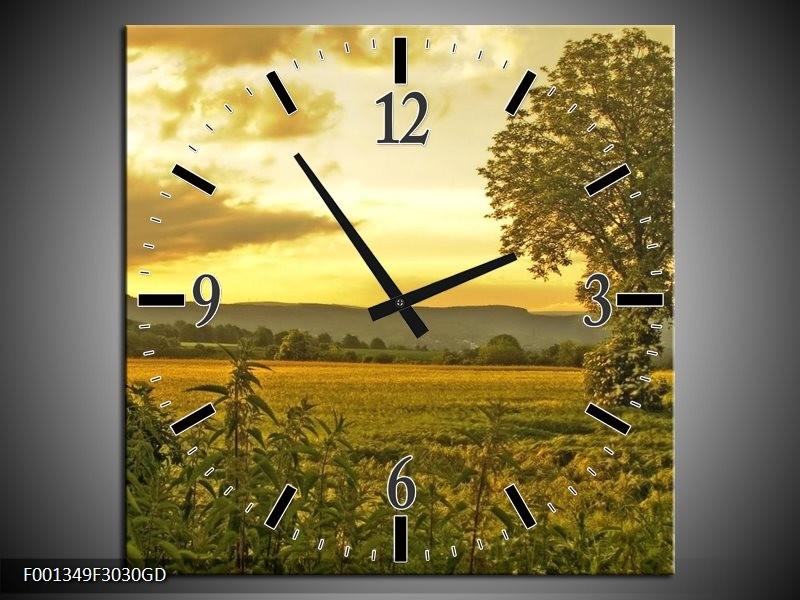 Wandklok op Glas Natuur | Kleur: Grijs, Groen, Geel | F001349CGD