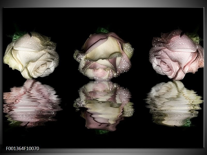 Glas schilderij Roos | Wit, Grijs, Zwart