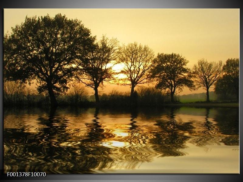Foto canvas schilderij Natuur   Zwart, Geel