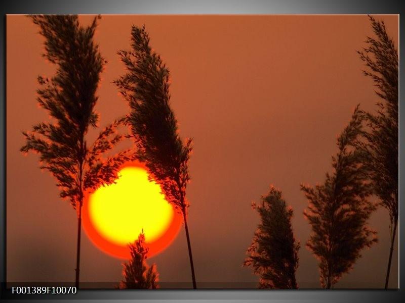 Glas schilderij Zonsondergang | Geel, Bruin, Oranje