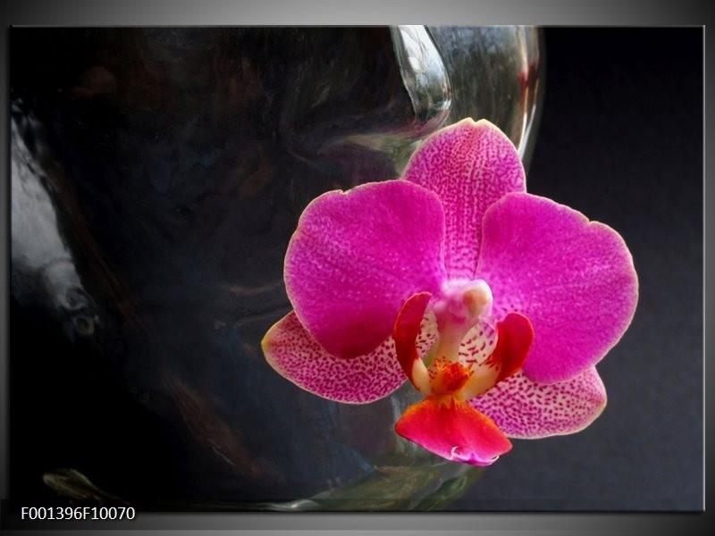 Glas schilderij Orchidee | Rood, Zwart, Grijs