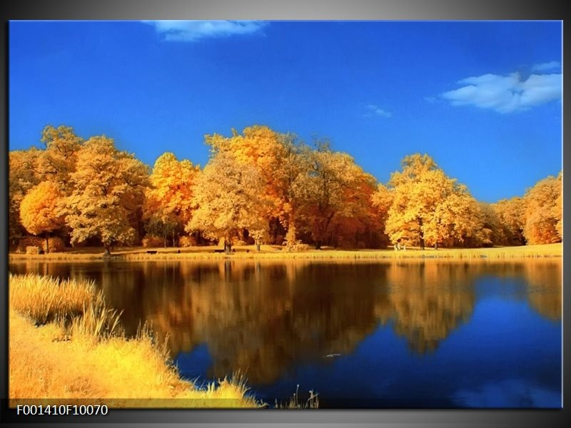 Glas schilderij Natuur | Blauw, Bruin, Oranje