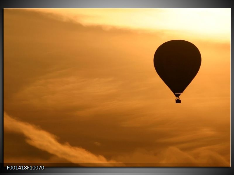 Foto canvas schilderij Luchtballon | Bruin, Zwart