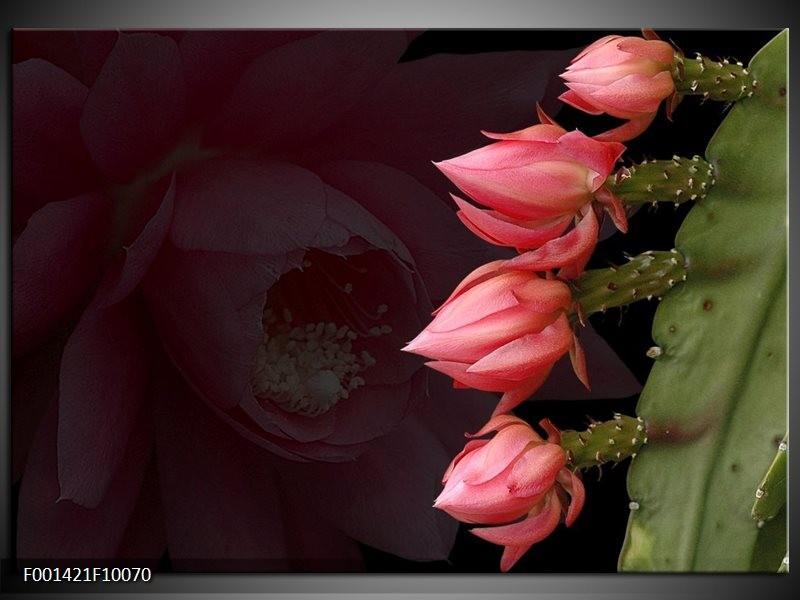 Foto canvas schilderij Bloem | Rood, Groen