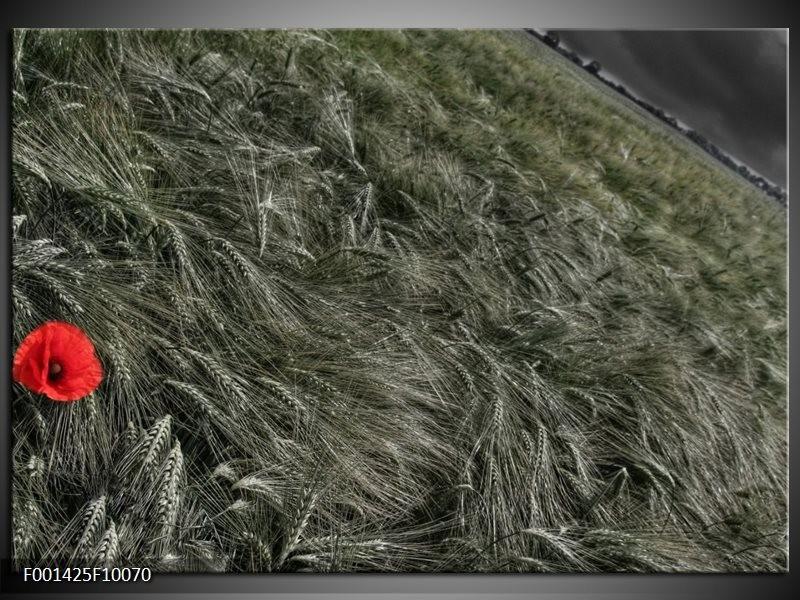 Foto canvas schilderij Gras | Grijs, Rood