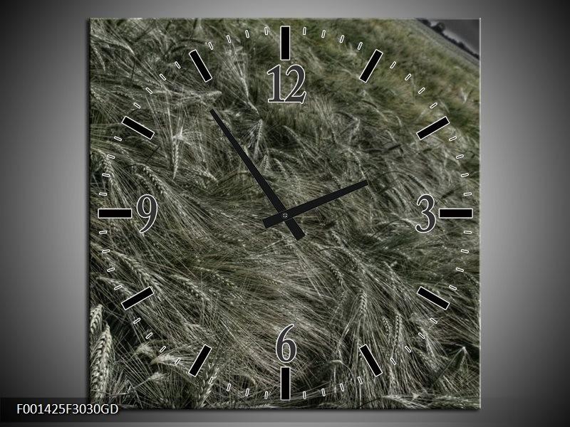 Wandklok op Glas Gras | Kleur: Grijs, Rood | F001425CGD