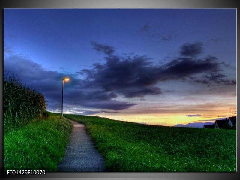 Foto canvas schilderij Natuur | Grijs, Groen, Geel