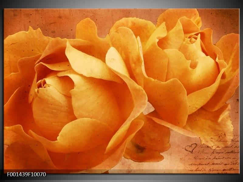 Foto canvas schilderij Roos | Bruin, Oranje, Geel