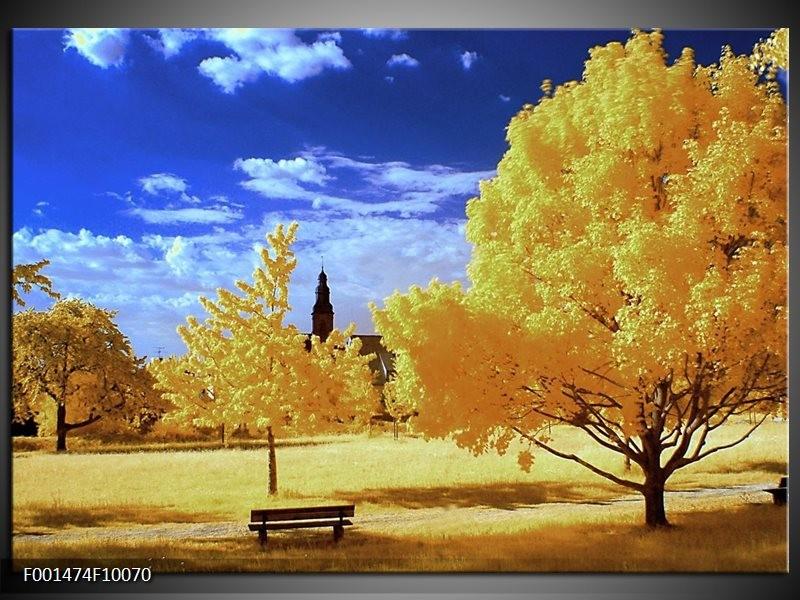 Foto canvas schilderij Natuur | Geel, Blauw, Wit