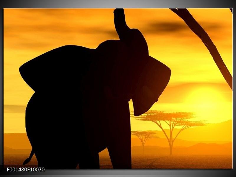 Glas schilderij Olifant | Zwart, Geel