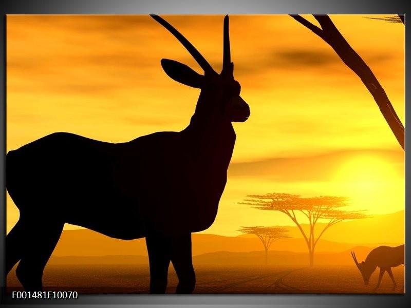 Foto canvas schilderij Dier | Zwart, Geel