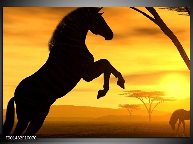Foto canvas schilderij Paard | Zwart, Geel