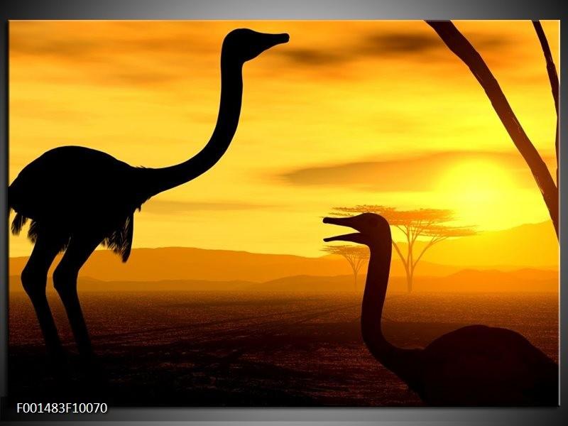Foto canvas schilderij Vogel | Zwart, Geel