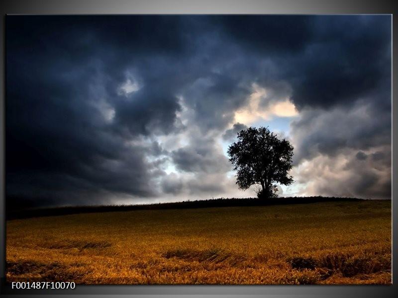 Foto canvas schilderij Natuur | Grijs, Boom, Zwart